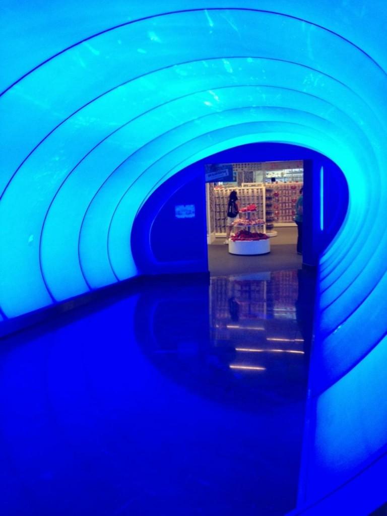 istanbul akvaryum tünel fotoğraf çekimi