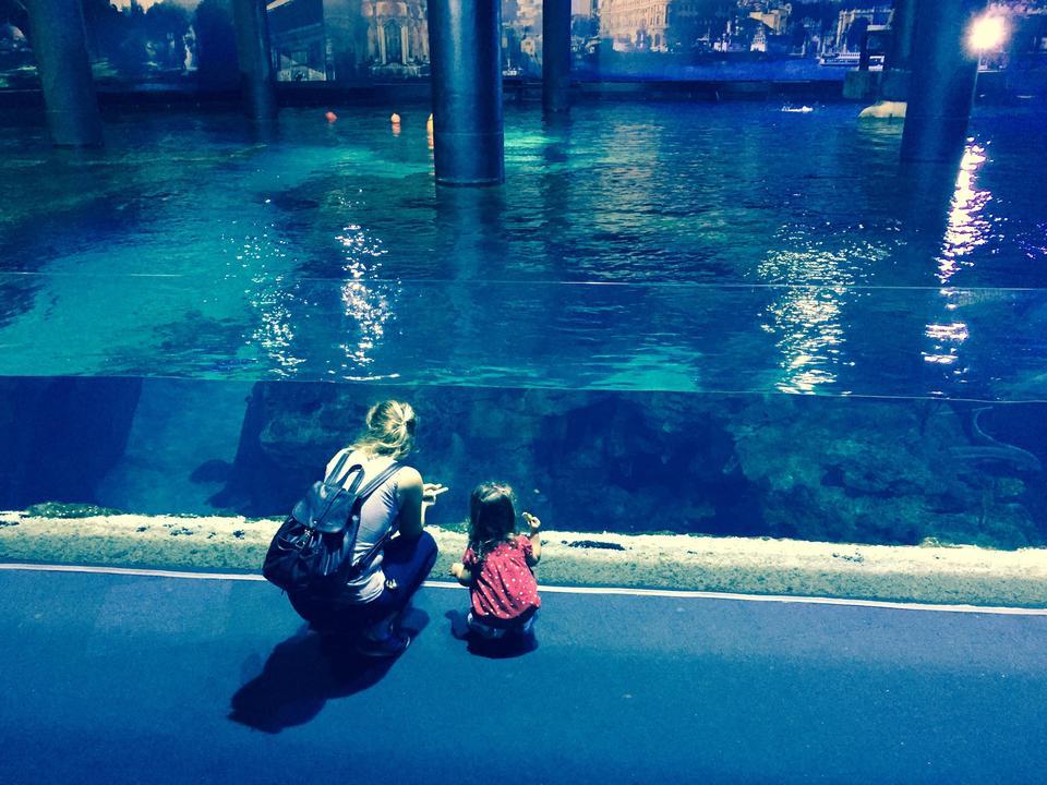 istanbul akvaryum fotoğrafları
